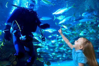 Aquarium Kemah Boardwalk Mysummercamps