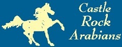 Castle Rock Arabians Horse Camp
