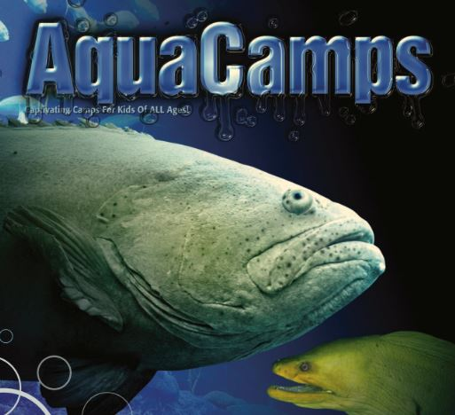 Aqua Camps