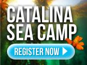 Catalina Sea Camp - Sea Adventures since 1979