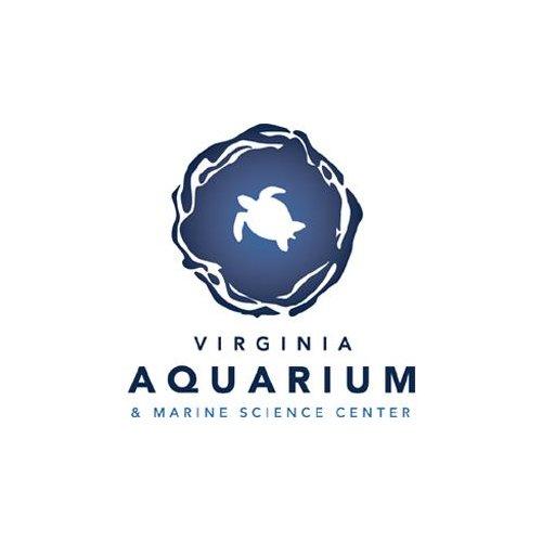 Virginia Aquarium & Marine Science Center Summer Camp