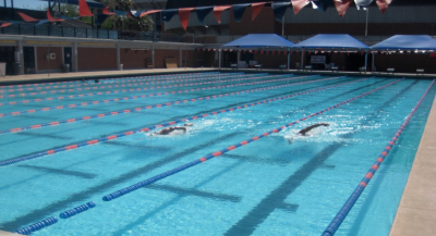Nike swim camp at hillsdale college mysummercamps for University of arizona swimming pool